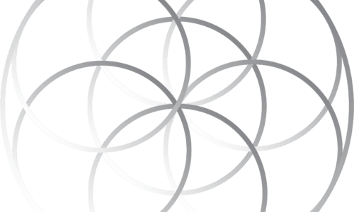 Harmonic Healing (10 classes, 1 private session)